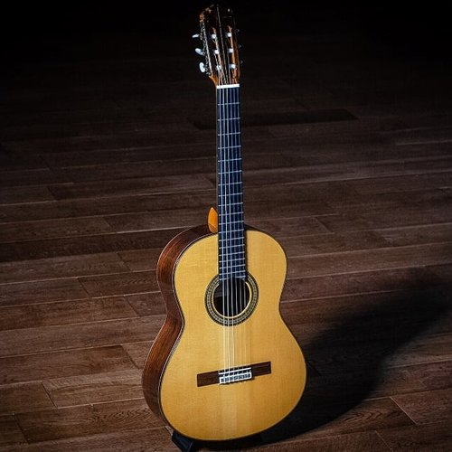 Concertgitaren