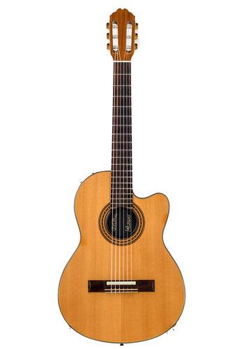 Gibson Gibson CE Nylon Chet Atkins 1989