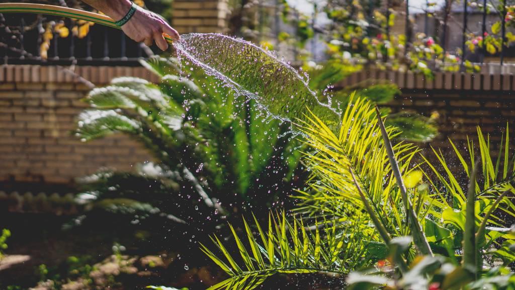 How to: de voorjaarsschoonmaak voor je tuin
