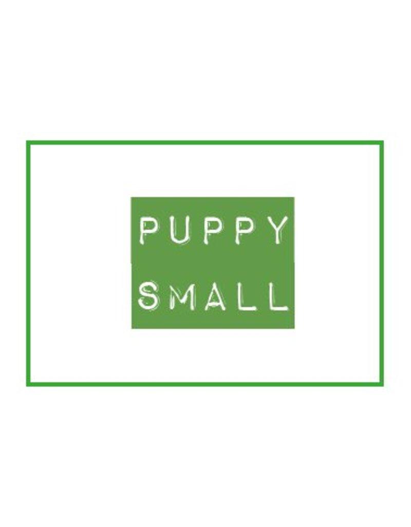 DARF Puppy KVV Small