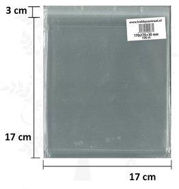 Hobbycentraal Quadratische Karte Beutel mit Klebestreifen 100st 170x170x35