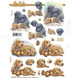 Le Suh Le Suh  feuille 3D
