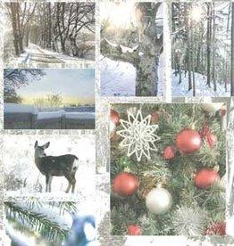 Hobbytheek Fotovellen Winter  Hobbytheek