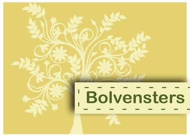 Bolvensters