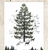 Studiolight Stamp (1) A6 Winter Trails, nr.303