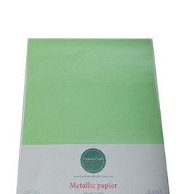 Central Craft Collection Metallic papier Gras Groen