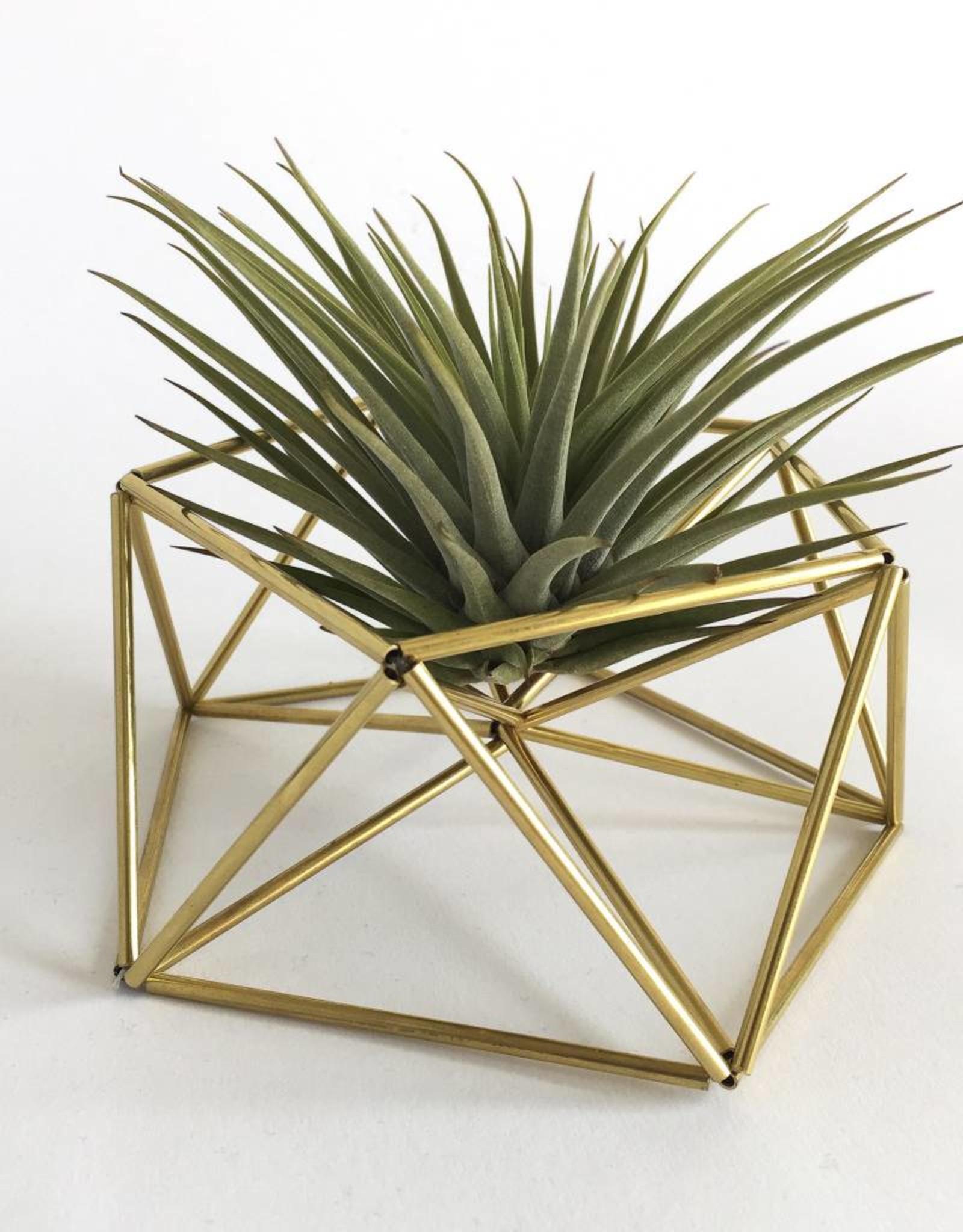 Draadzaken DIY table planter MARS-gold
