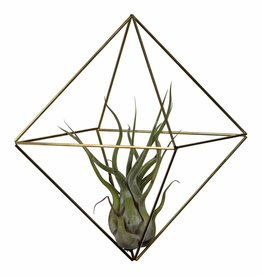 Draadzaken DIY himmeli Cube medium-gold