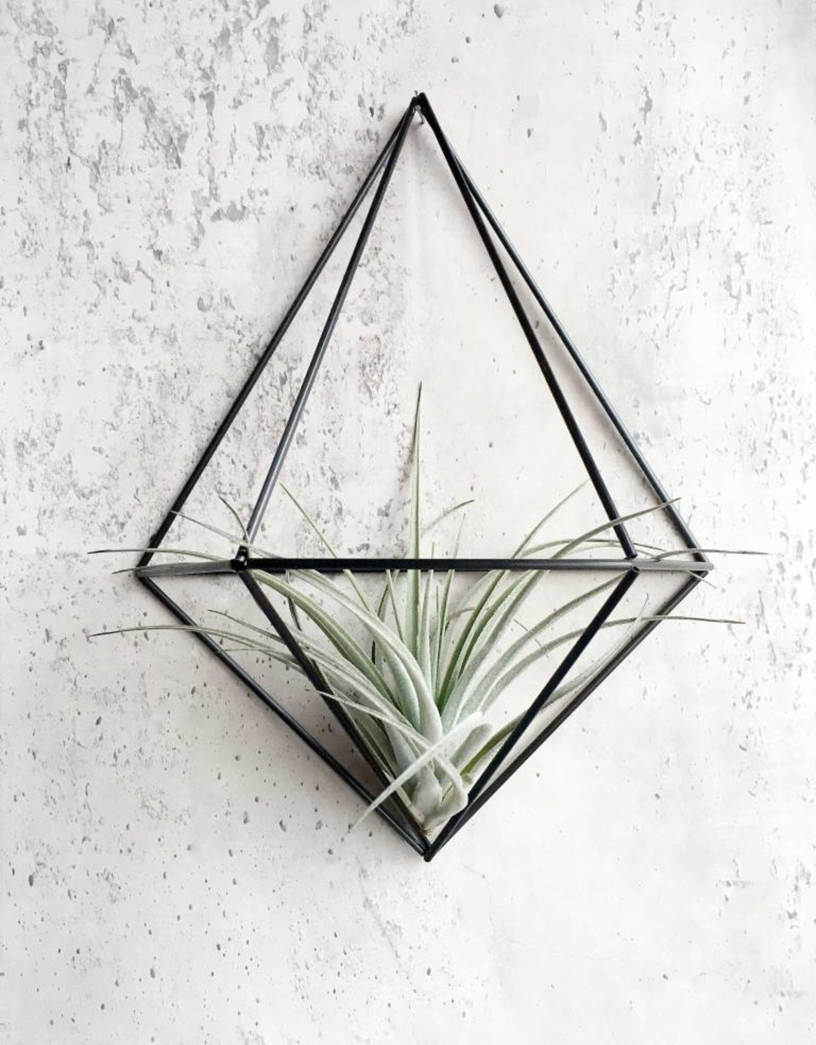 Draadzaken DIY wall planter Diamond-black