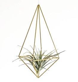 Draadzaken DIY himmeli Drop medium-gold
