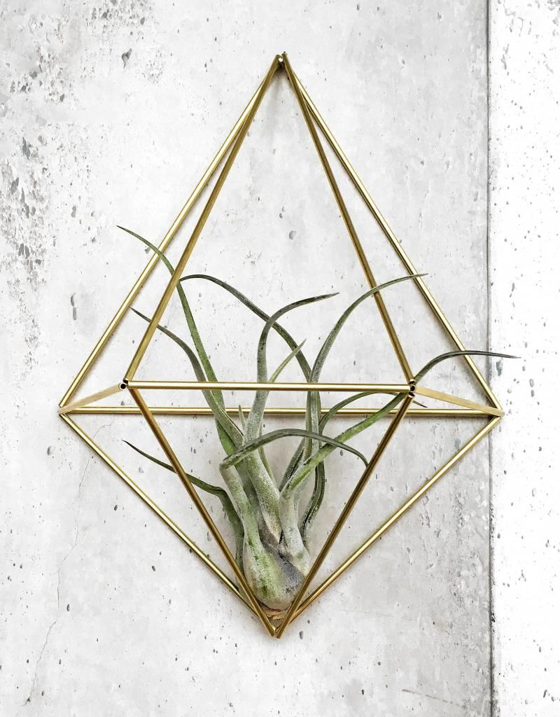 Draadzaken DIY wall planter Diamond-gold