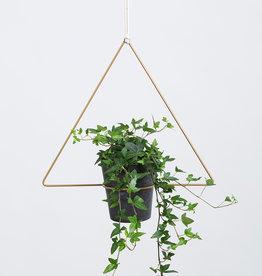 Planthanger Trigona-gold