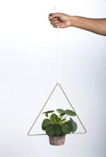 Draadzaken Planthanger Trigona-gold