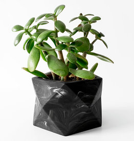 House Raccoon Pot PALUA Large-black marble