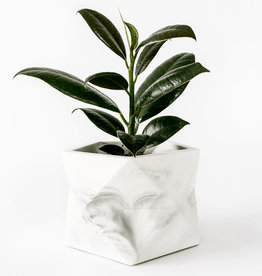 House Raccoon Pot PALUA Large-white marble