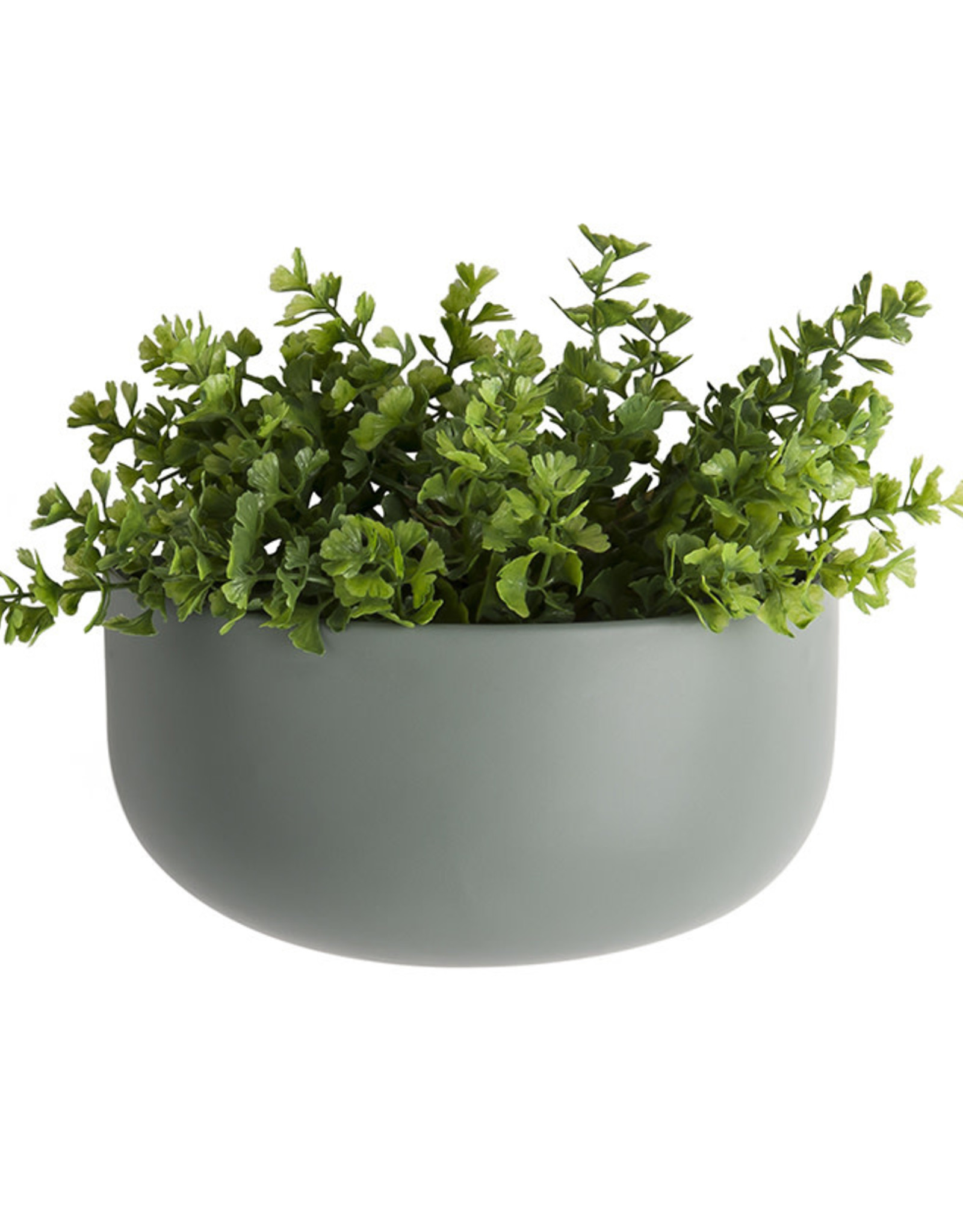 Wall Plant pot Oval Wide-green