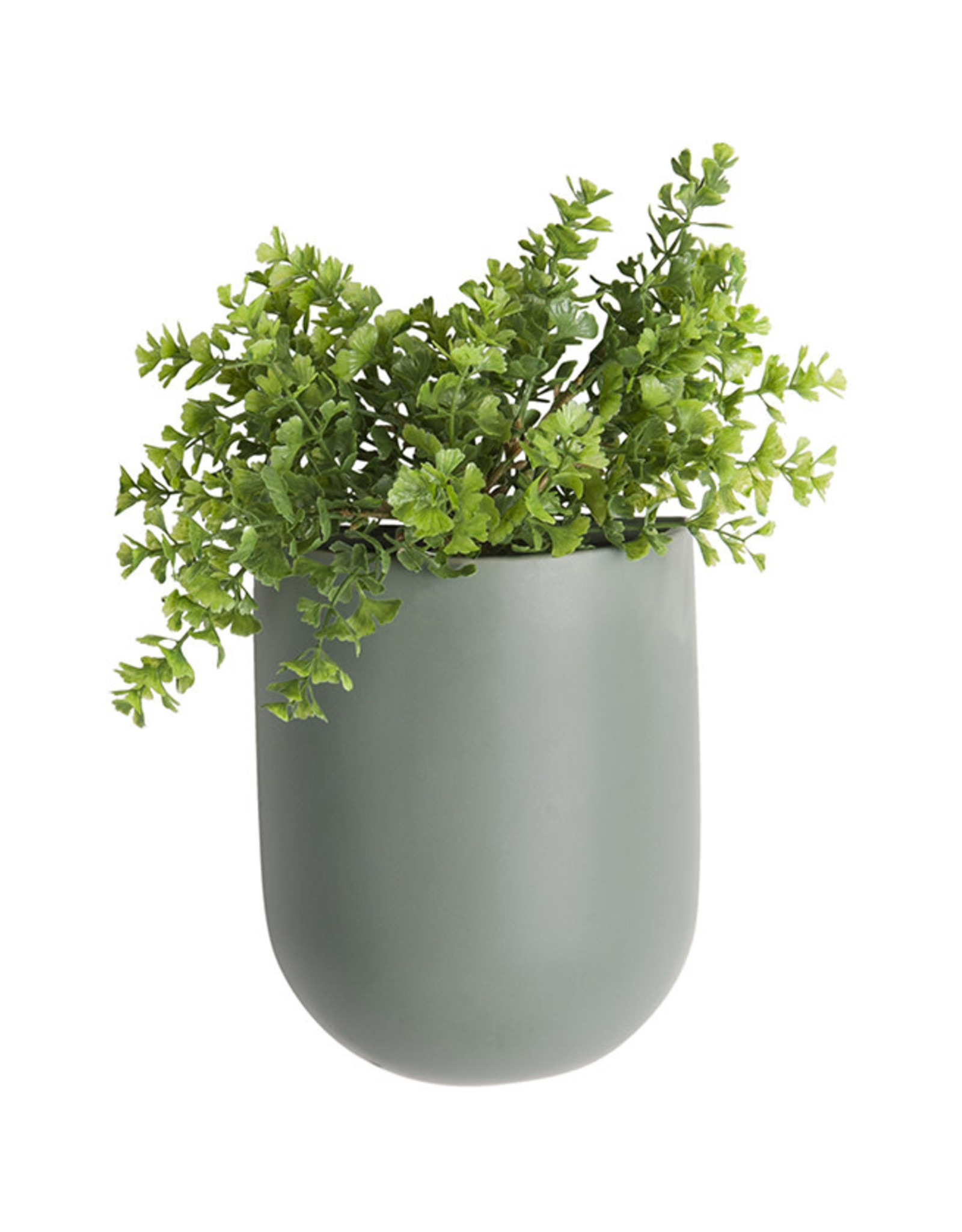 Wall Plant pot Oval-green