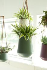 Hanging pot Skittle LARGE-jungle green