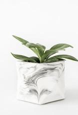 House Raccoon Pot PALUA Medium-white marble