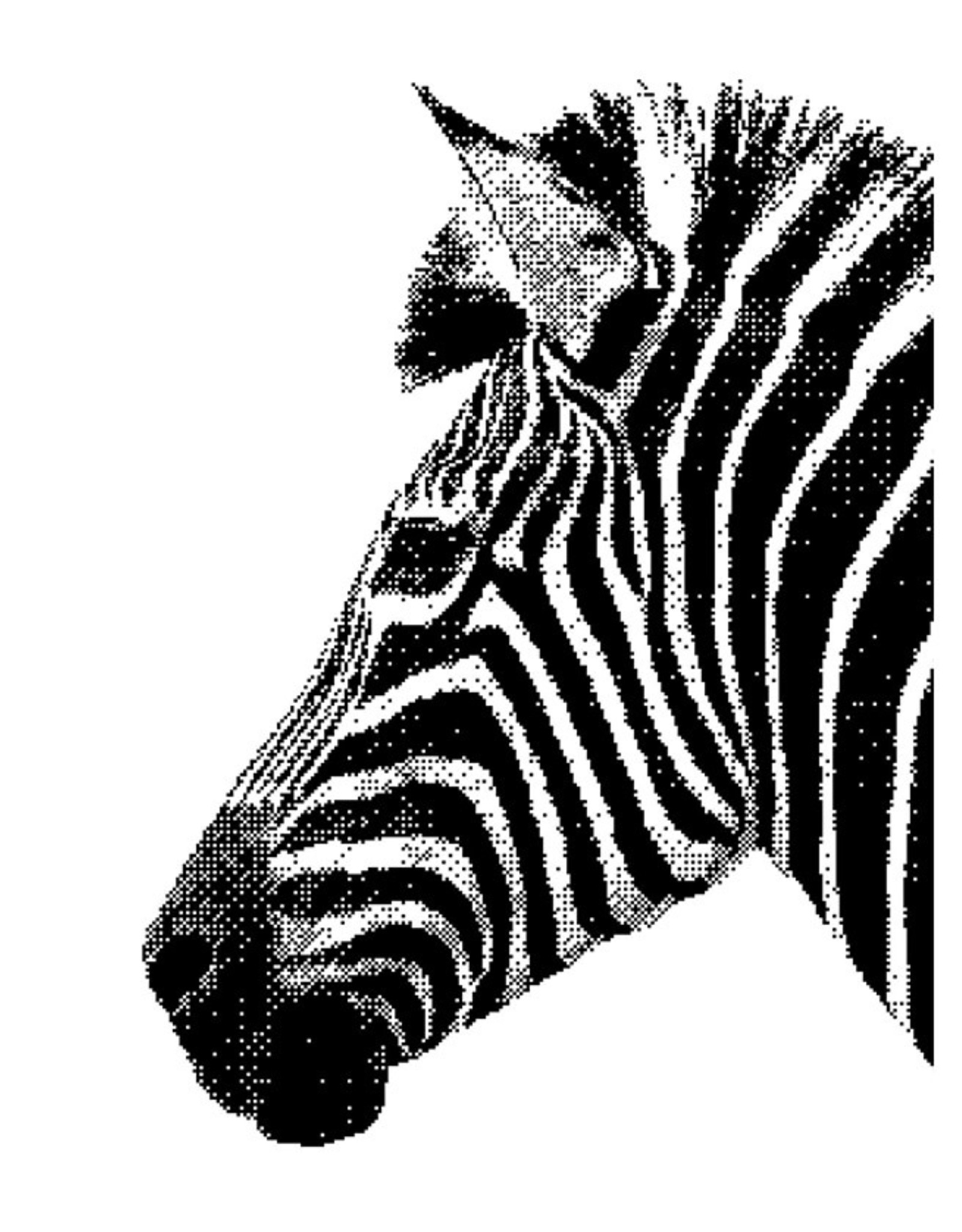 Stratier XL Pixelposter STRATIER-pixel na pixel