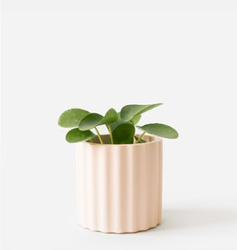 House Raccoon Pot MILA Medium-millenial pink