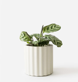 House Raccoon Pot MILA Medium-silver green