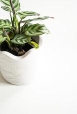 House Raccoon Pot LISA Medium-white marble