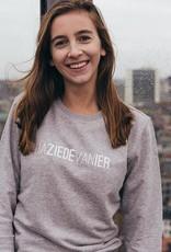 Kleir Sweater Biokatoen DAZIEDEVANHIER-grijs