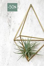 Draadzaken DIY wall planter Facet-gold