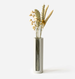 House Raccoon Lily Vase Propagation Station-silver green