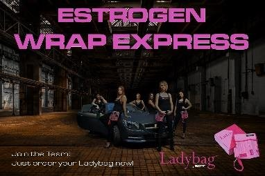 LADYBAG - TOOLBAG for REAL LADIES -Special Edition 400-016-LB-017