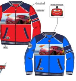 Cars  Cars  vest