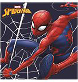 spiderman Spiderman Magic Towel 30 x 30 cm + Hanger
