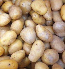"""Kartoffel """"Brötler"""" festkochend (CH)"""