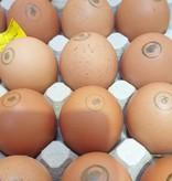 "Eier ""Freilandhaltung"" (CH)"