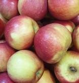 Apfel Diwa (CH)