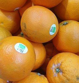 Orangen blond bio (IT)