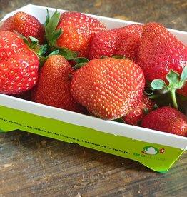 Erdbeeren (BIO) vom Hof