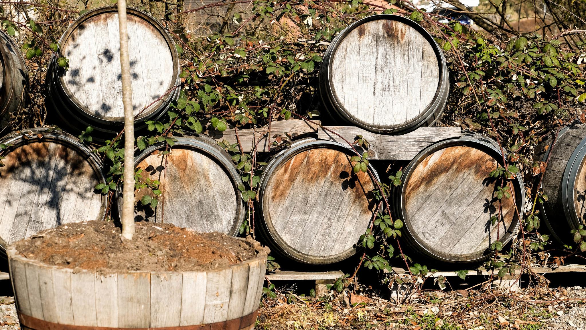 Ausgediente Whiskyfässer