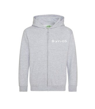 Boylo's Kids X Co-ord Zip Hoody Grey