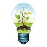 HQ LED Vintage Filamentlamp Dimbaar G95 4 W 345 lm 2700 K
