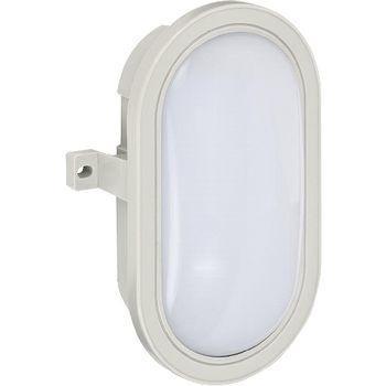 LED Muurlamp 10 W 800 lm 6400 K