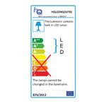 HQ LED Wandlamp voor Buiten 6 W 190 lm Zwart
