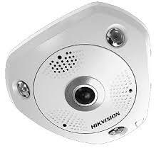Fisch-Augen-Kamera