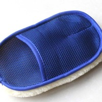 Carchemicals Wash Mitt