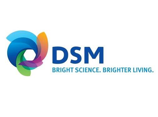 DSM Arnite ID3040 - Grijs