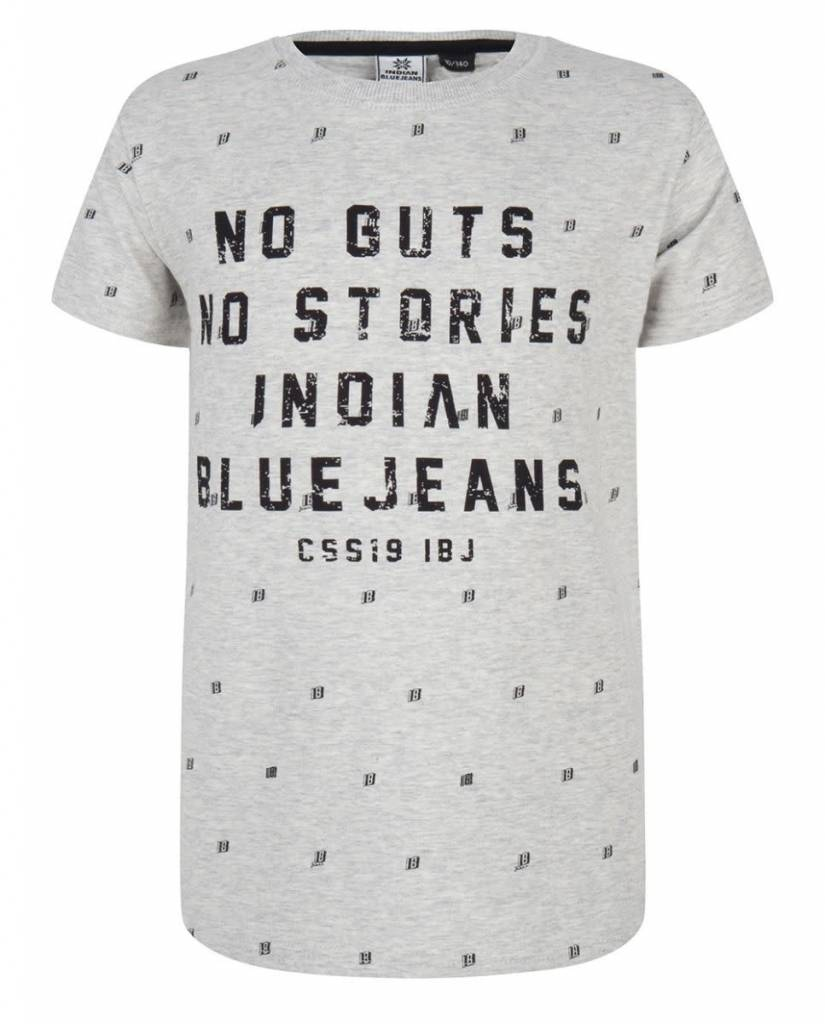 Indian Blue Jeans No Guts