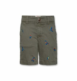 Ao76 Barry Shorts Parrots