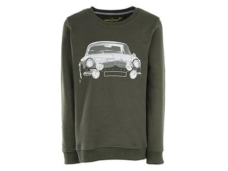 Stones and Bones Car Sweater