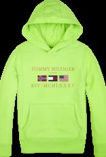 Tommy Hilfiger Artwork Hoodie